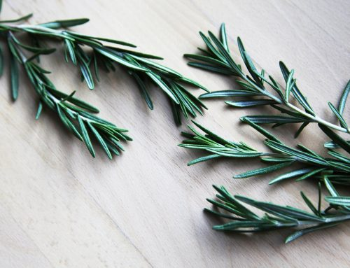 Herbs to Strengthen the Immune System